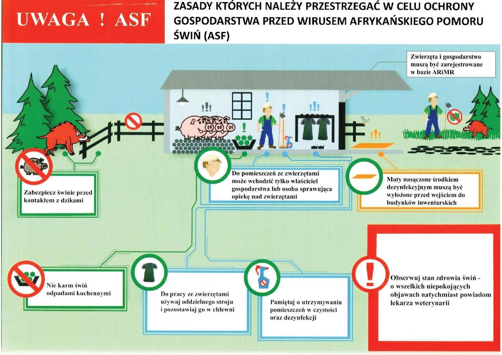 Ulotka-Informacyjna-ASF-2.pdf2