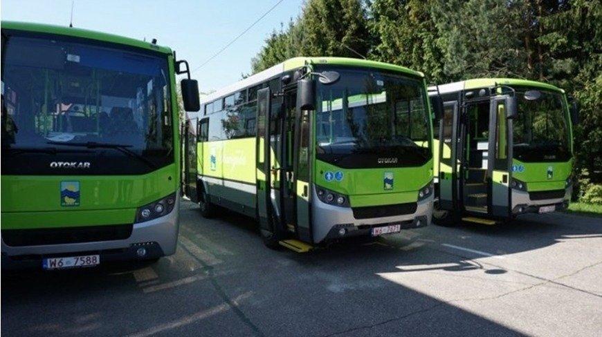 grafika poglądowa - autobusy